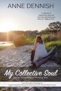 my collective soul